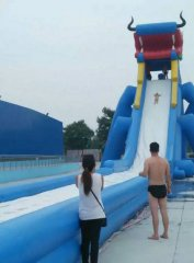 龙头充气水滑梯_大型充气玩具,水上乐园,充气加厚支架游泳池厂家